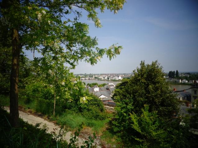Vista do rio Loire ao fundo.